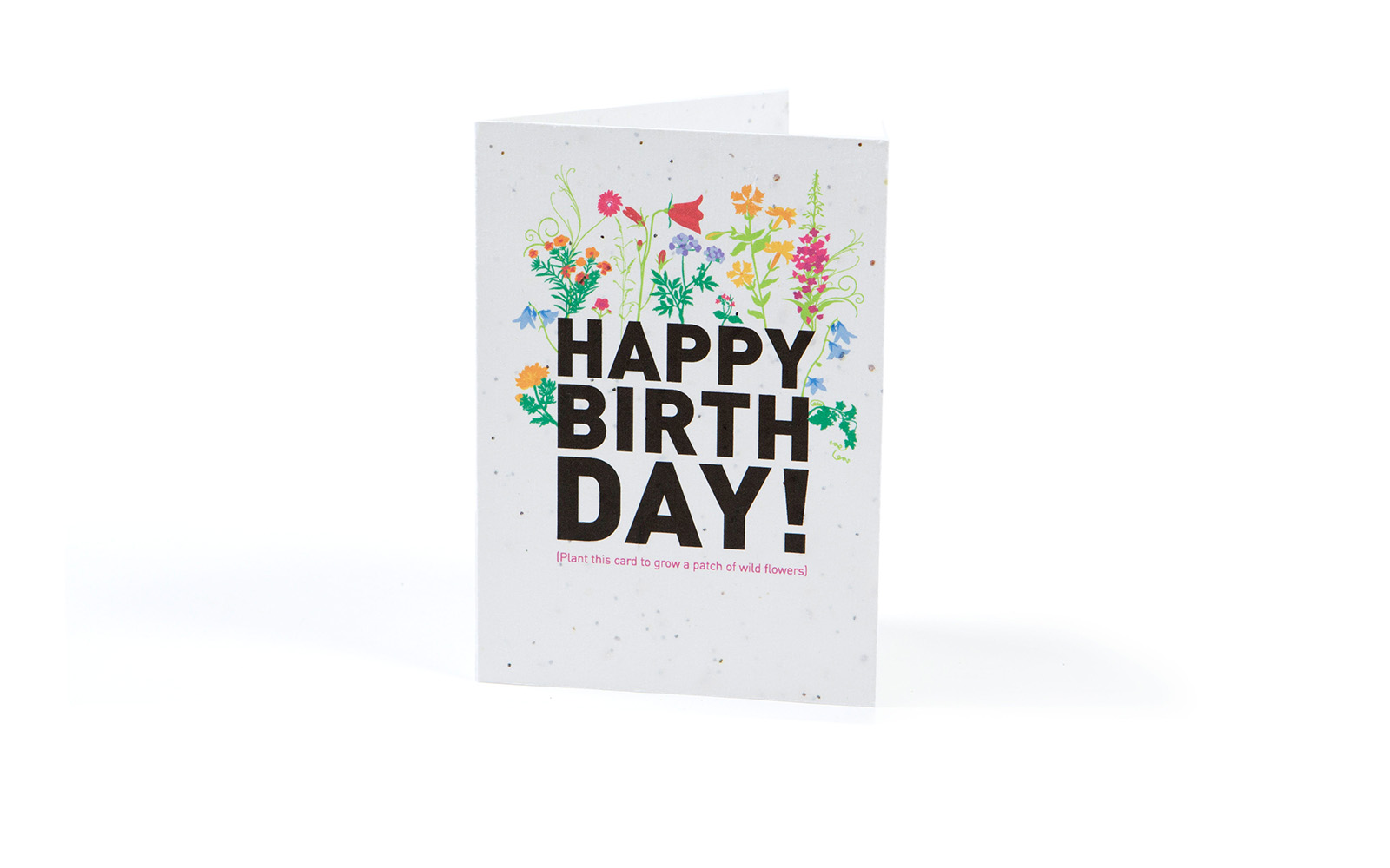 Seeded-Card-Bday2